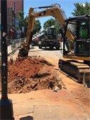Clayton Street tree stump removal
