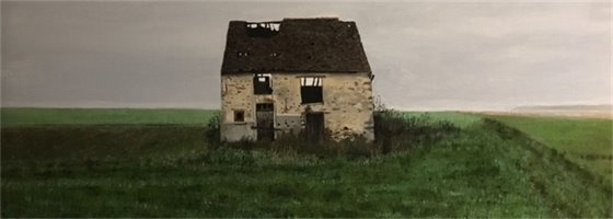 derelict house in green field