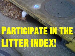 Participate in the Litter Index