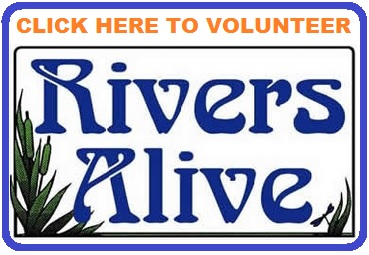 Rivers alive volunteer button