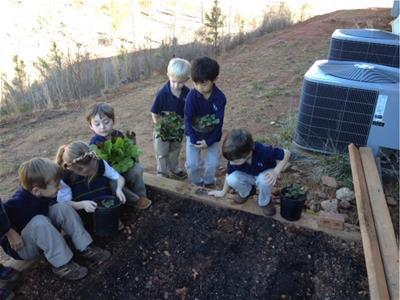 st joes shroeder KACCB garden grant 2015
