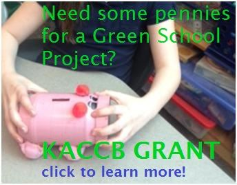 Green school grant button