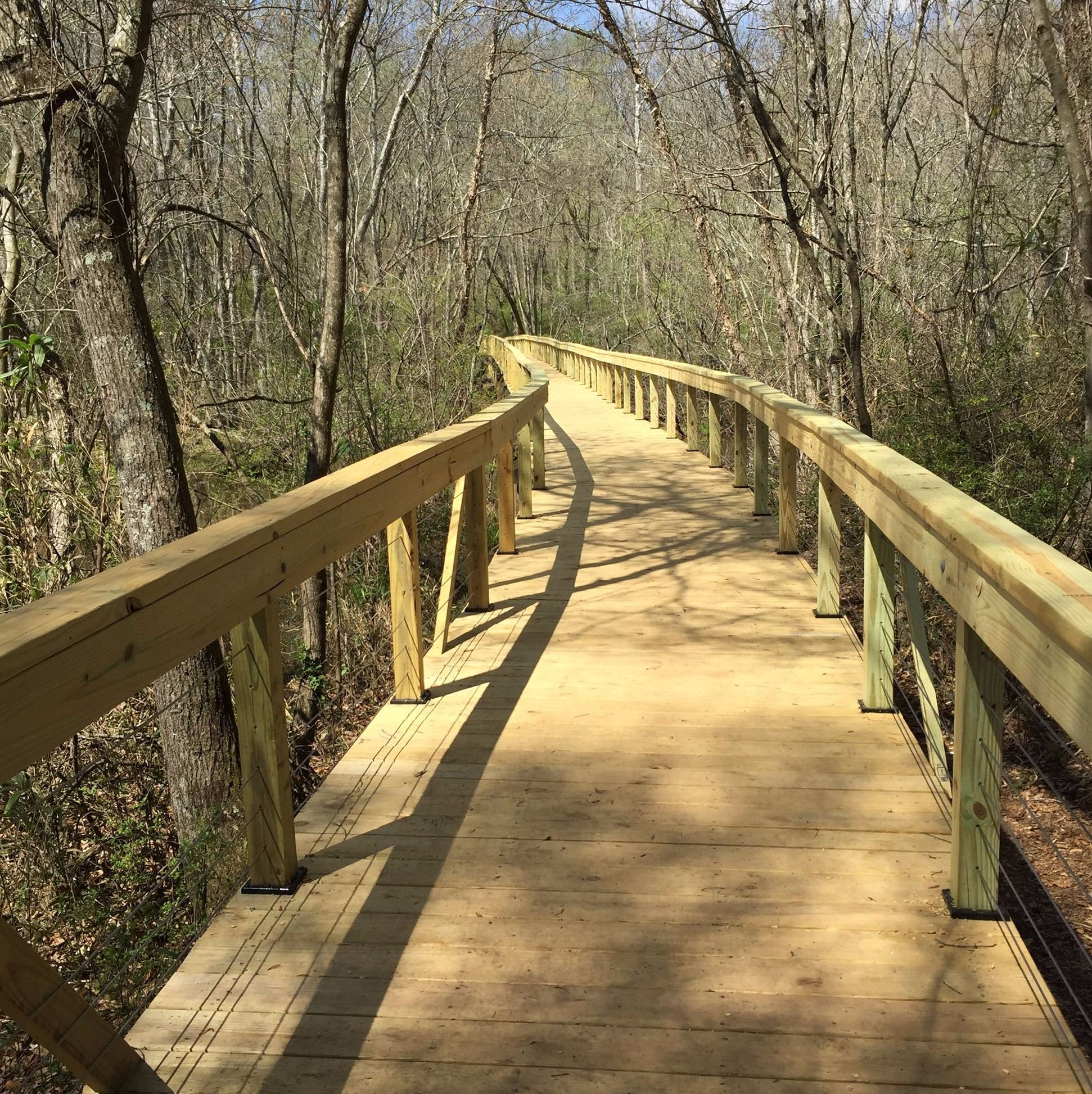 Photo of the long boardwalk on Cook's Trail following extensive structural maintenance, decking r