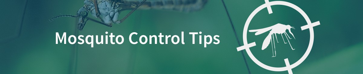 Mosquito-Control-Header