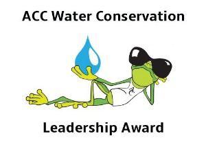 Cool frog leadership award