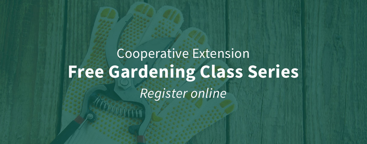Cooperative Extension Free Gardening Class Series