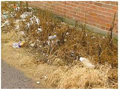 Litter Index example extremely littered