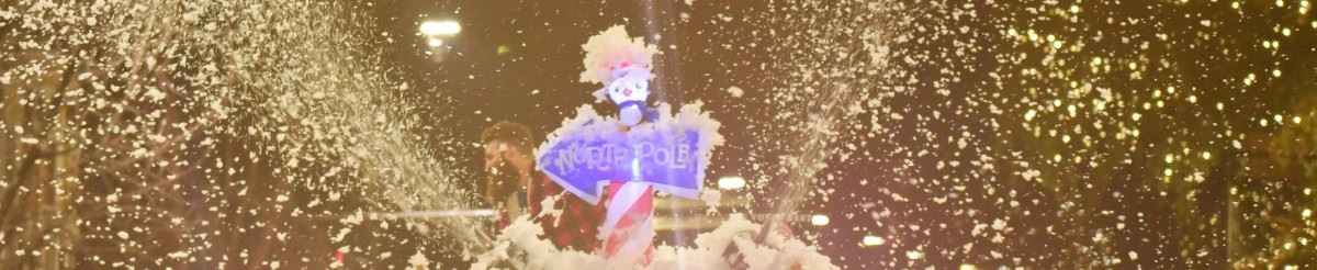 parde - north pole - banner