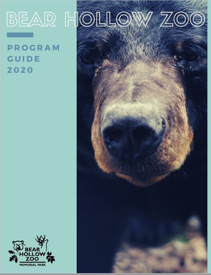 BHZ Program Guide 2020 cover