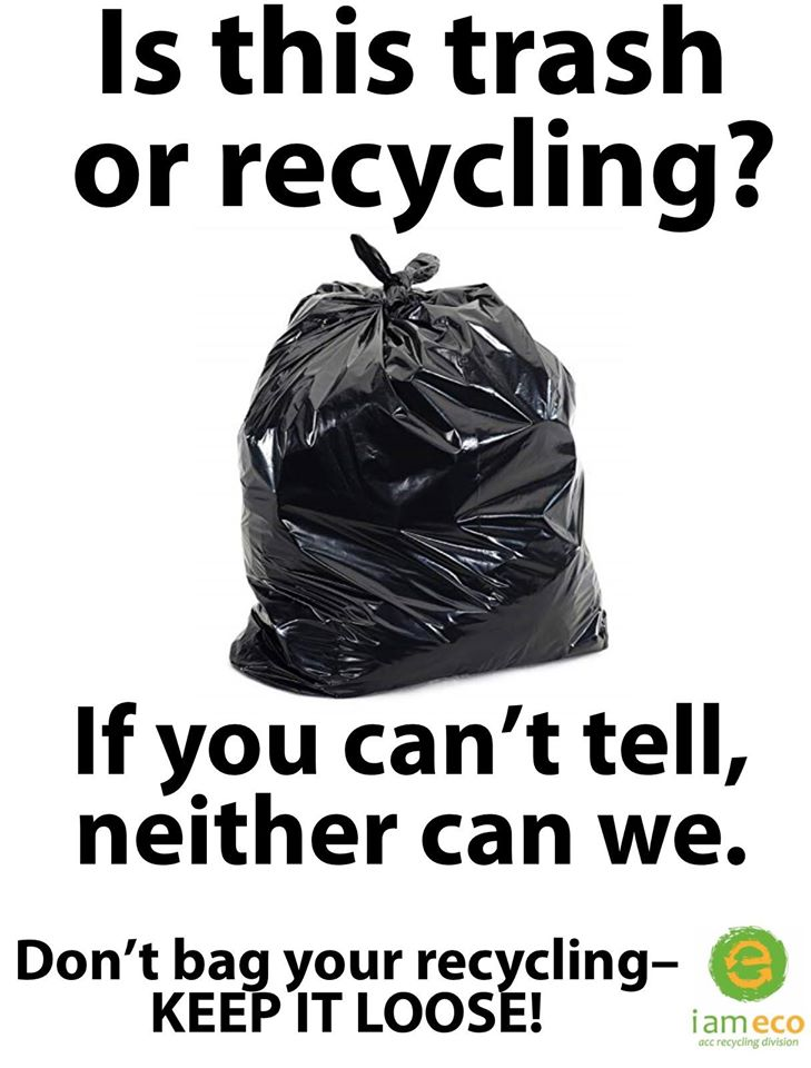 Trash or Recycling