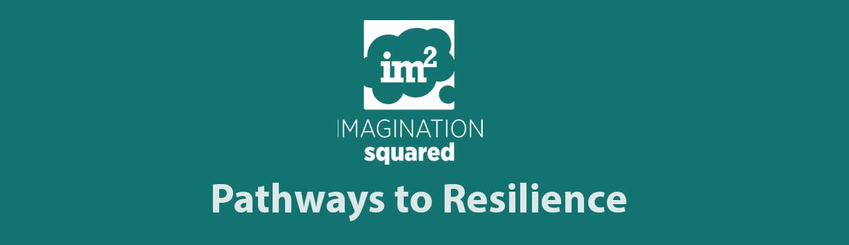 Imagination Squared: Pathways to Resilience