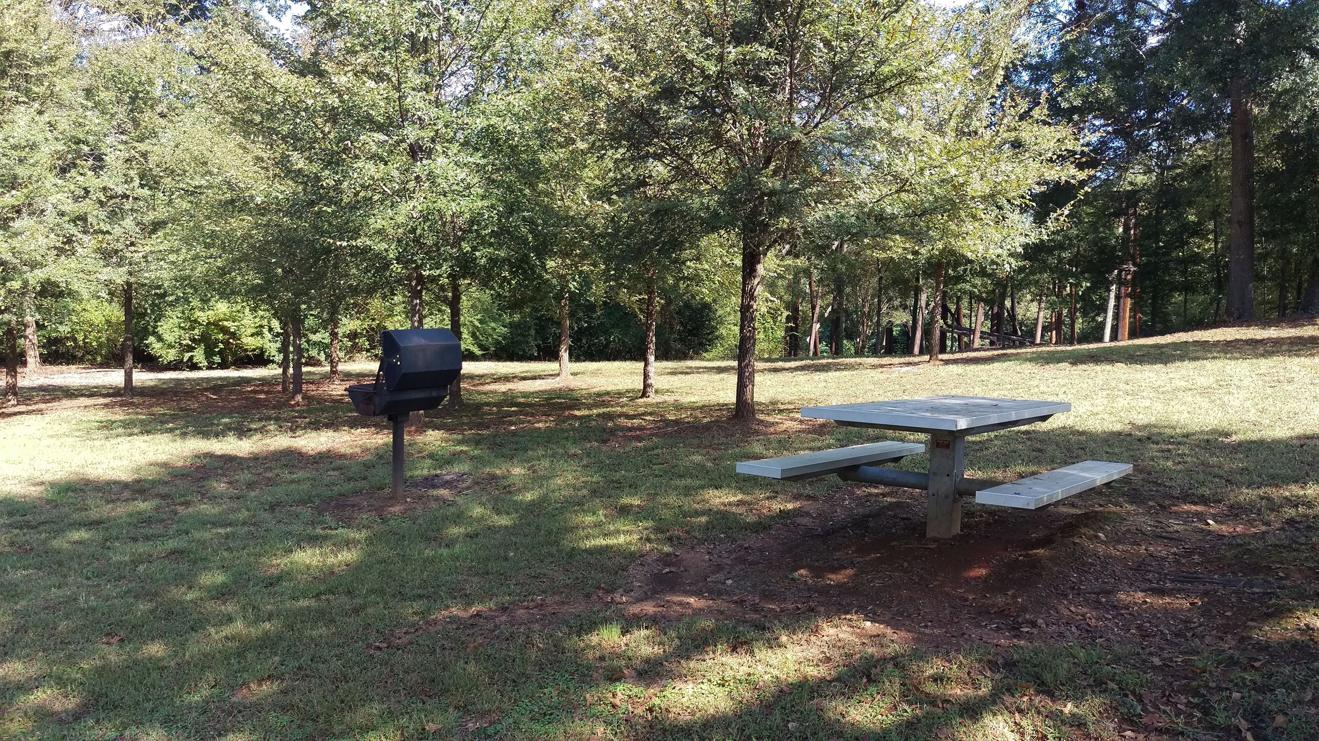Photo of the Picnic Area adjacent to the Poplar Street Parking at Dudley Park.