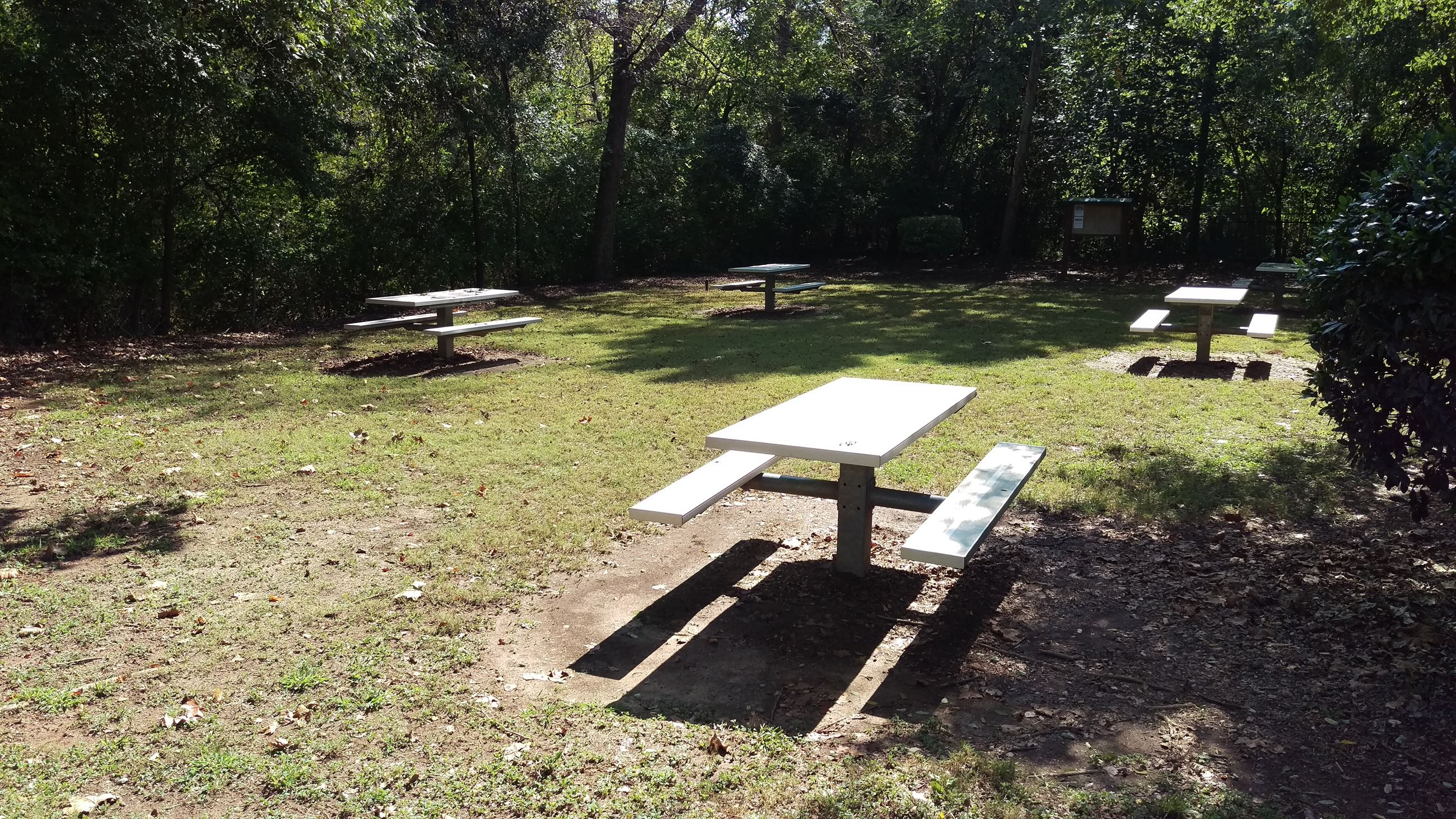 Photo of the Picnic Area adjacent to Weaver D's in Dudley Park.