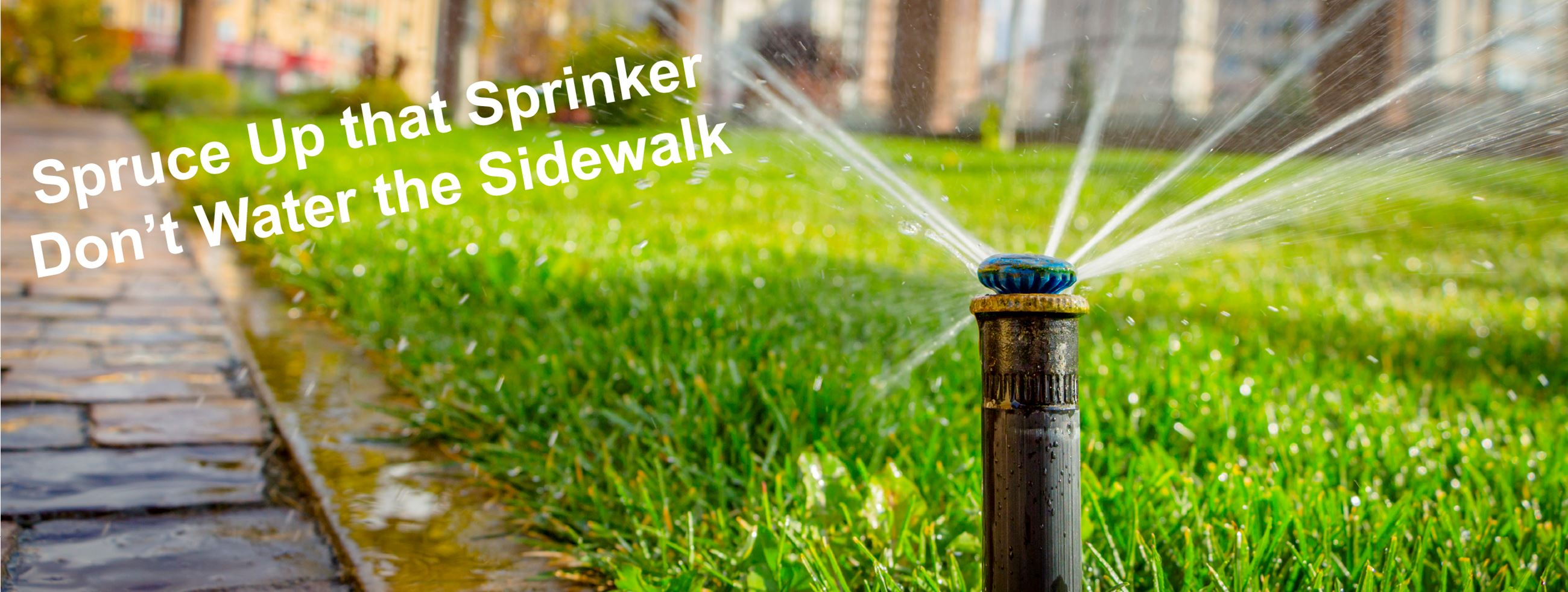 Sprinkler on sidewalk