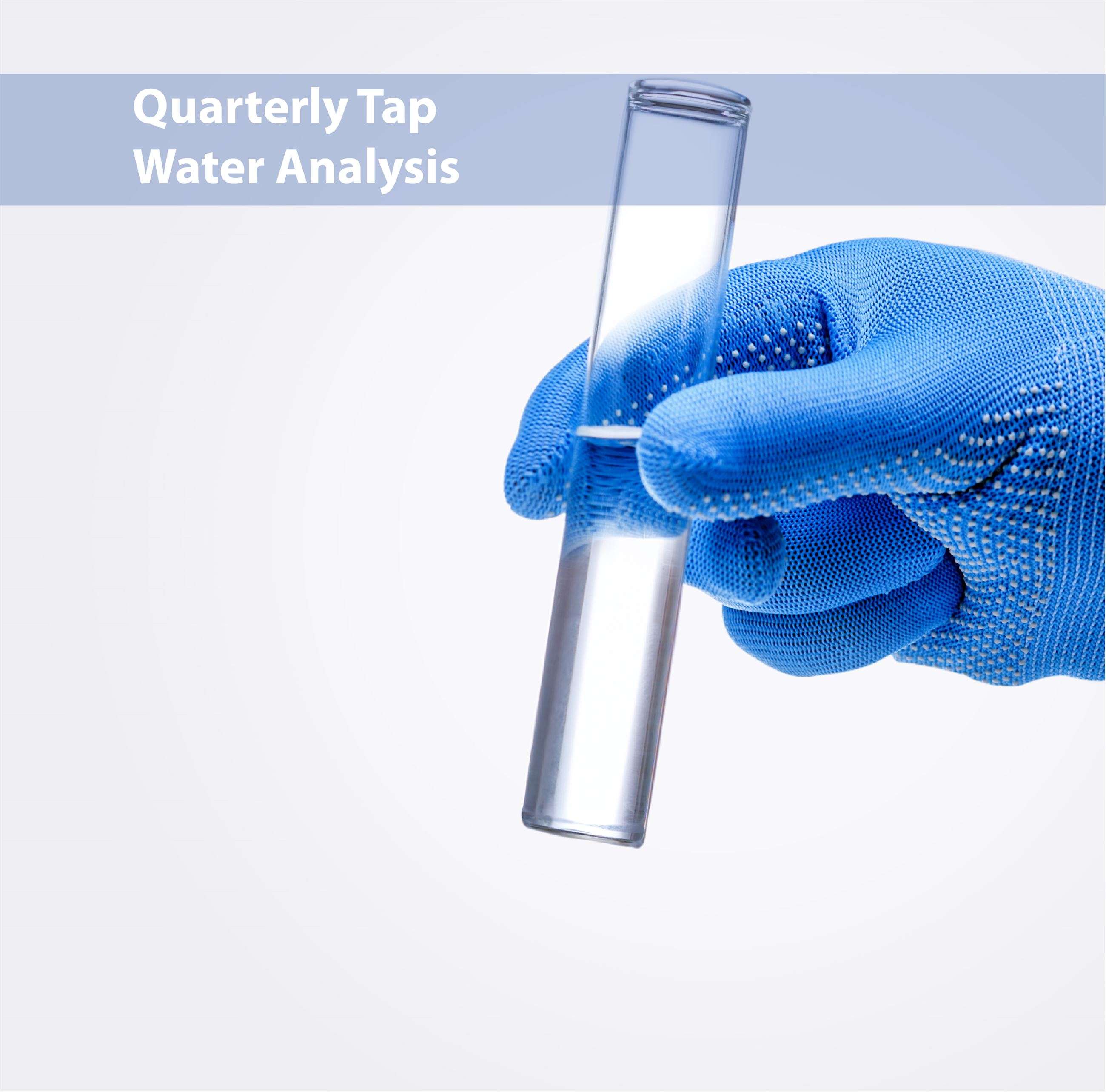 A test tube of water being held by a blue, gloved hand Opens in new window