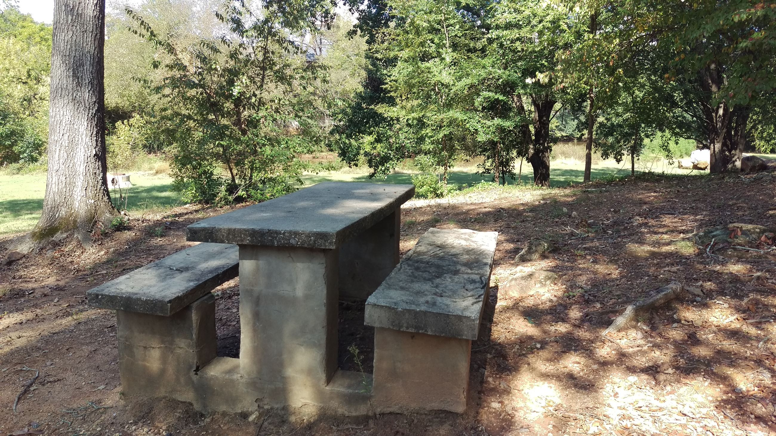 Photo of the Picnic Area in the core of Dudley Park overlooking Trail Creek and the North Oconee Riv