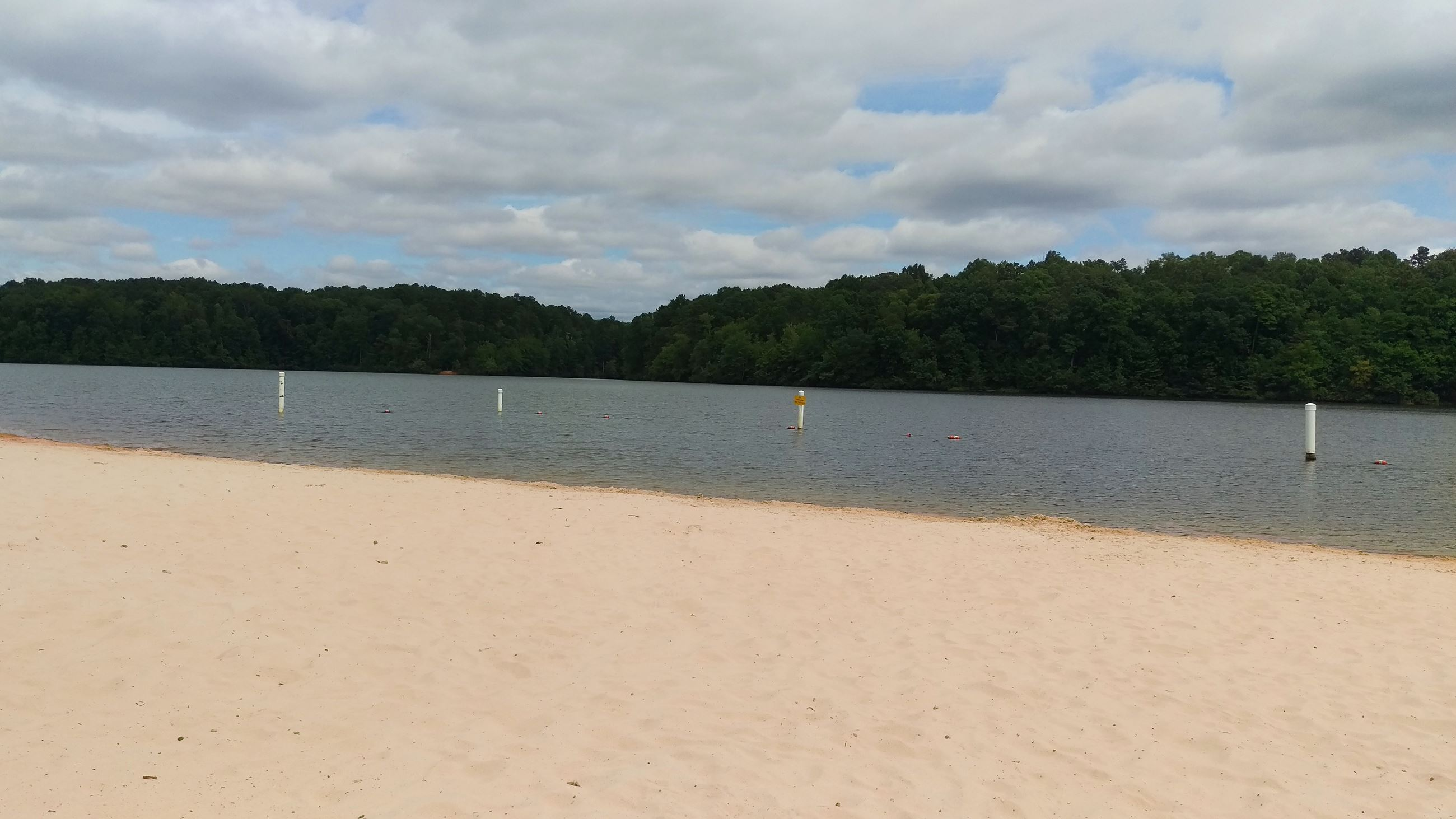 Photo of the Beach at Sandy Creek Park looking out across Lake Chapman.