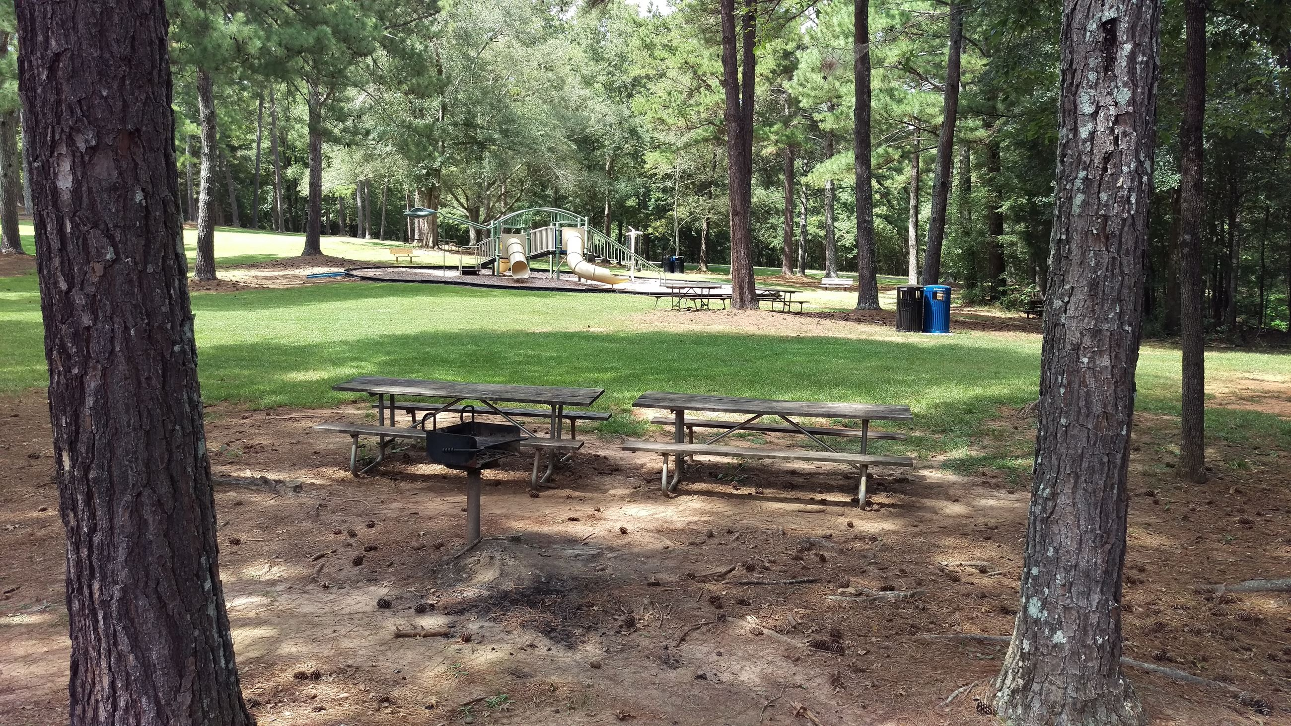 Photo of Picnic Area 5 at Sandy Creek Park.