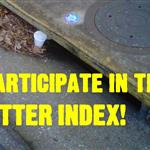 litter index link picture.JPG