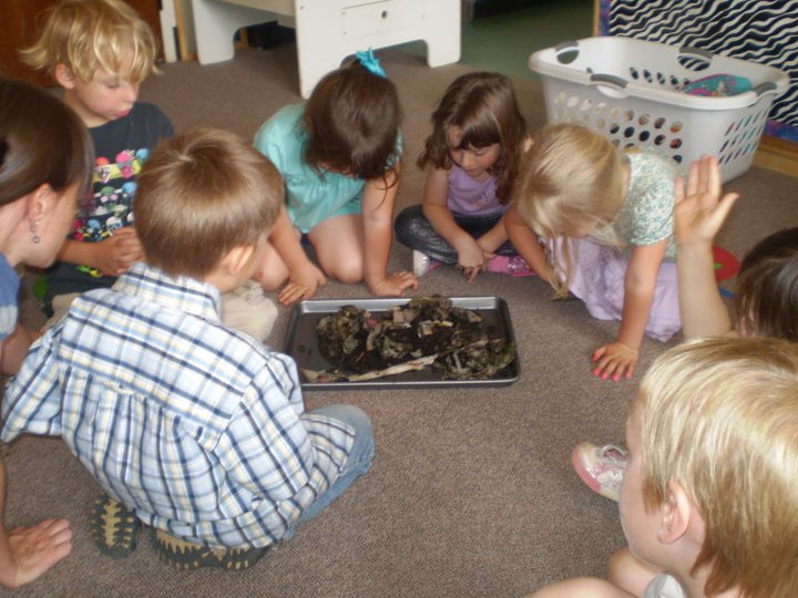 kids looking at worms